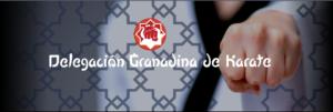 Karate Granada